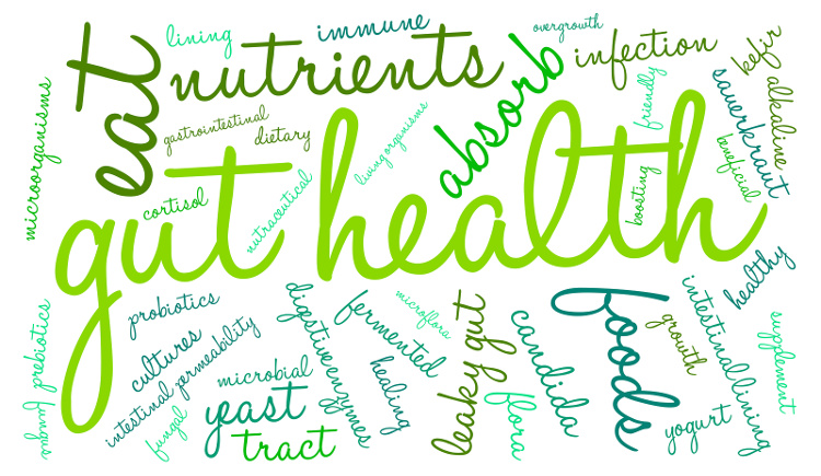 word collage of gut health