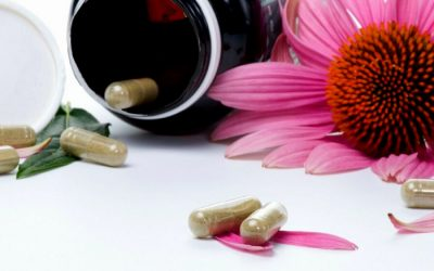 Five studies proving Echinacea is a potent immune building nutrient