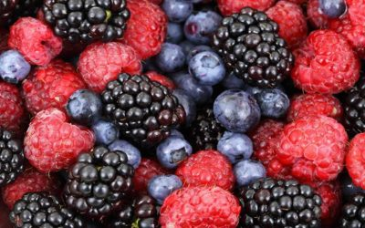 Low intake of flavonoid-rich foods linked with higher Alzheimer's risk over 20 years