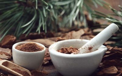 Pine bark extract improves ADHD symptoms in Taiwanese study